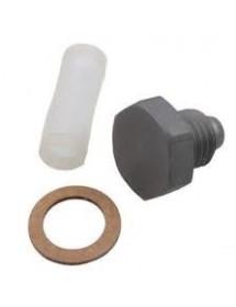 Kit filtro gasolina Dell Orto VHSH 53089