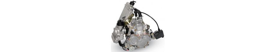 Repuestos para motores de kart Rotax