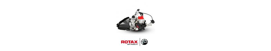Motores kart Rotax