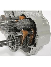 Desmo Cambio Motor TM KZ R1